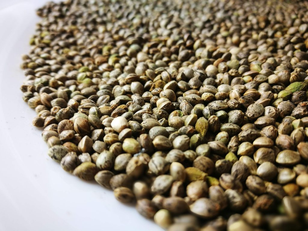 Our certified seed suppliers ensure constant quality and quantity requirements to fulfill all your hemp seed needs.